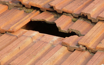 roof repair Tamworth Green, Lincolnshire